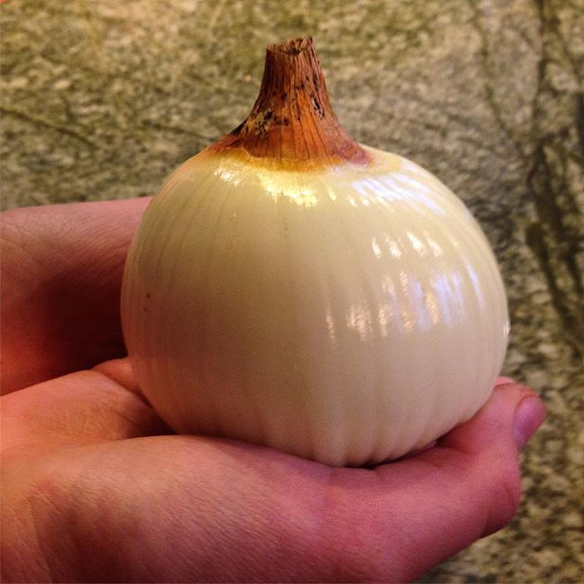 Is it a pumpkin or an onion? #Thanksgiving #foodie #mystery