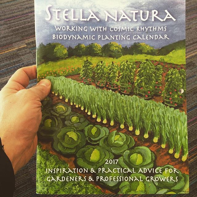 Beyond #organic growing is #biodynamic. We met Sherry last year at #PASA and find the calendar and teas working with the cosmos produces healthier plants - you will too. Grab copies at Ideas Bookstore and Kimberton Whole Foods.
