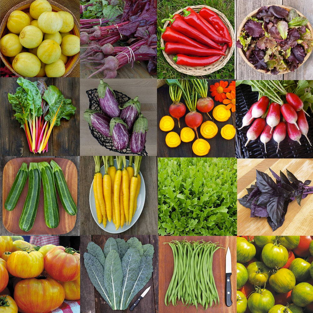 Gourmande-Garden.jpg
