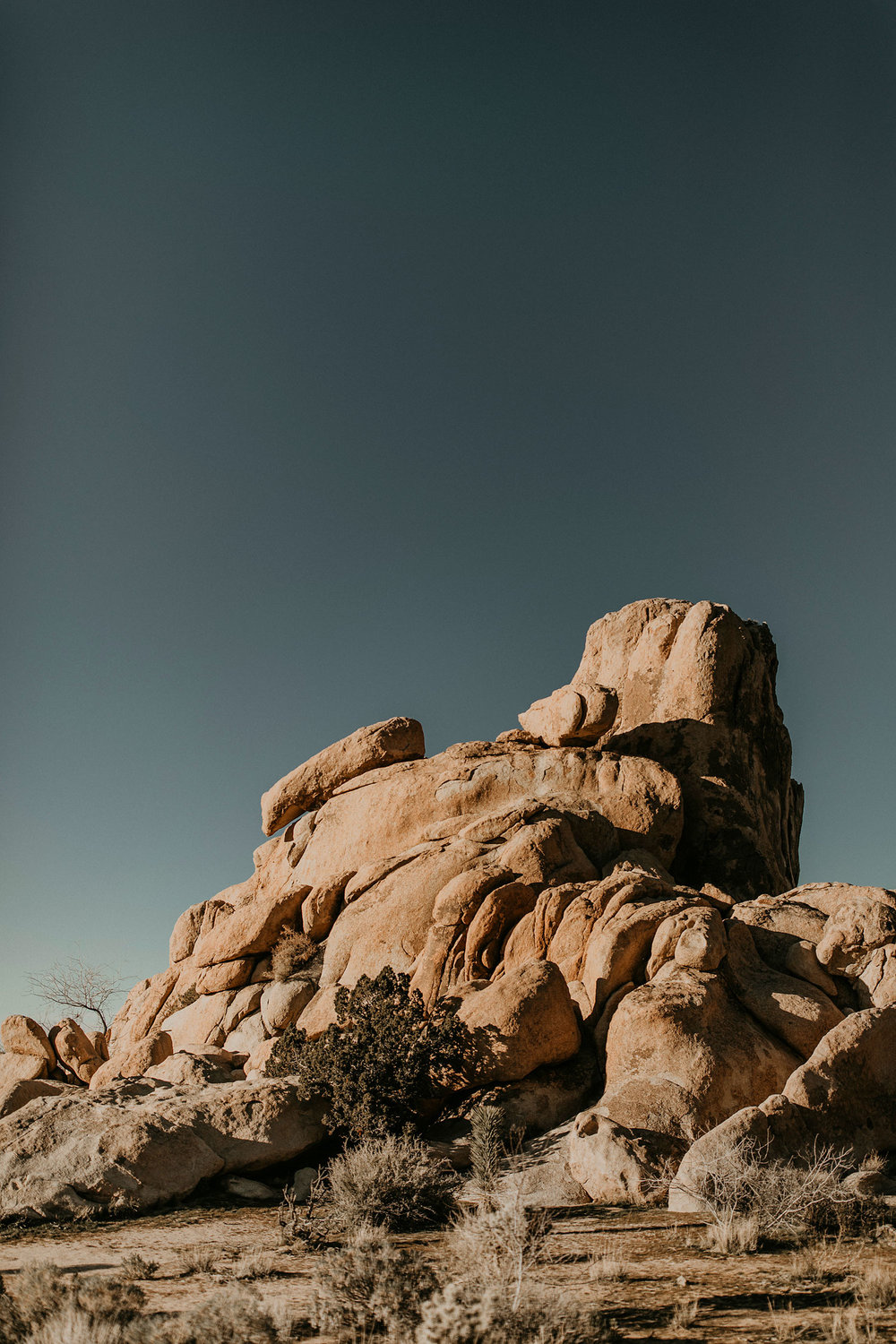 Joshua-Tree-Travel-Photographer-Self-Portraits-02.jpg