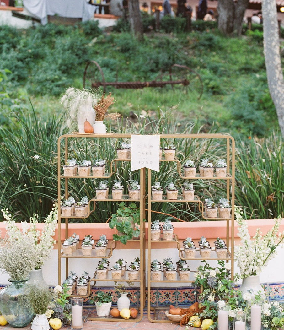 Guest+Favors+Display+Decor+by+Finding+Flora