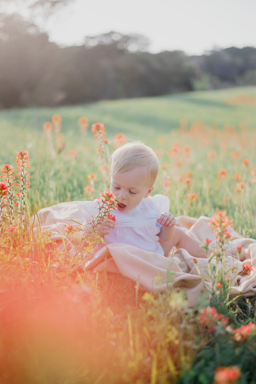 Austin Portrait Photographer First Birthday Session Texas Wildflowers Bluebonnets051.jpg