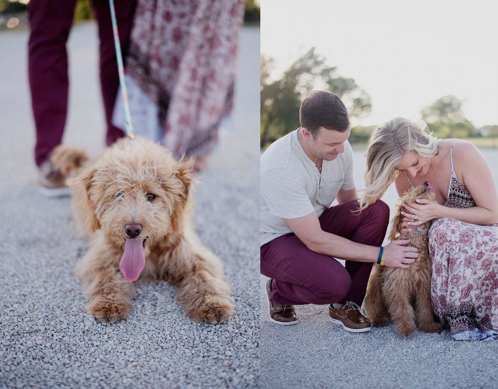 Austin Fur Baby Pet Photographer Doodle Family Session Lone Oak Barn Anniversary008.jpg