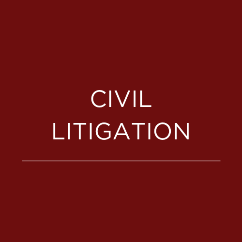 BUSINESS LITIGATION (11).png