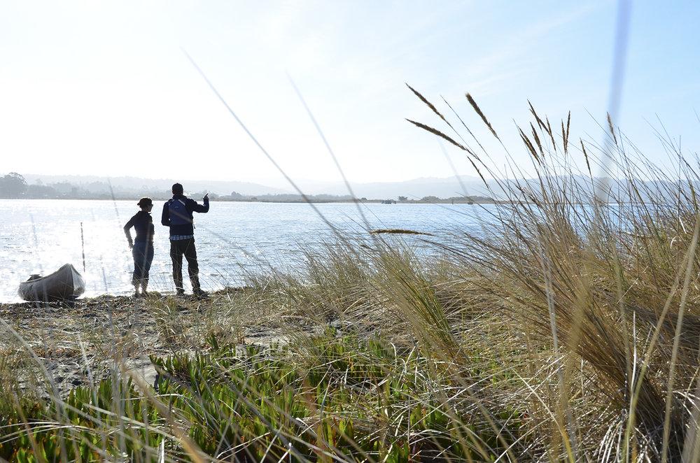 Oyster Beach_109_RGB WEB.jpg