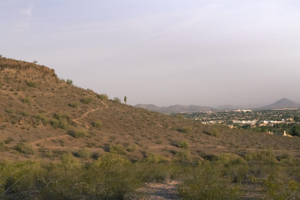 lookout-1 - Gabby Martinez.jpg