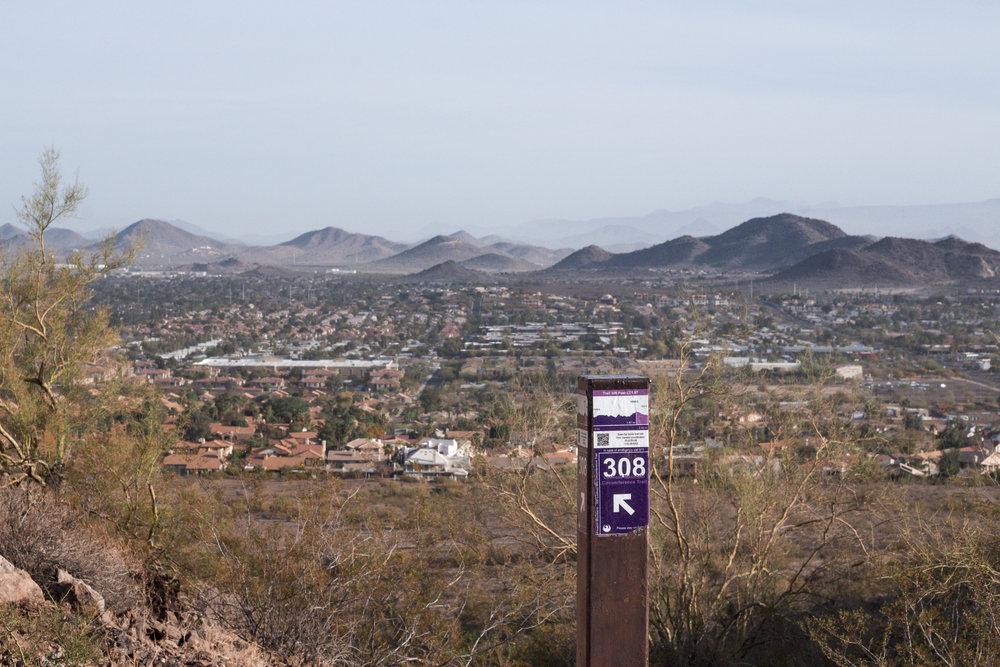 lookout-6 - Gabby Martinez.jpg
