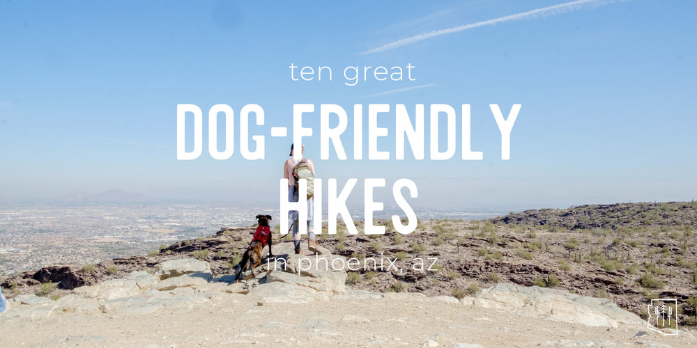 A beginner's guide to hiking in phoenix, arizona | blisters & bliss.