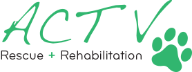 ACT V Rescue & Rehabilitation