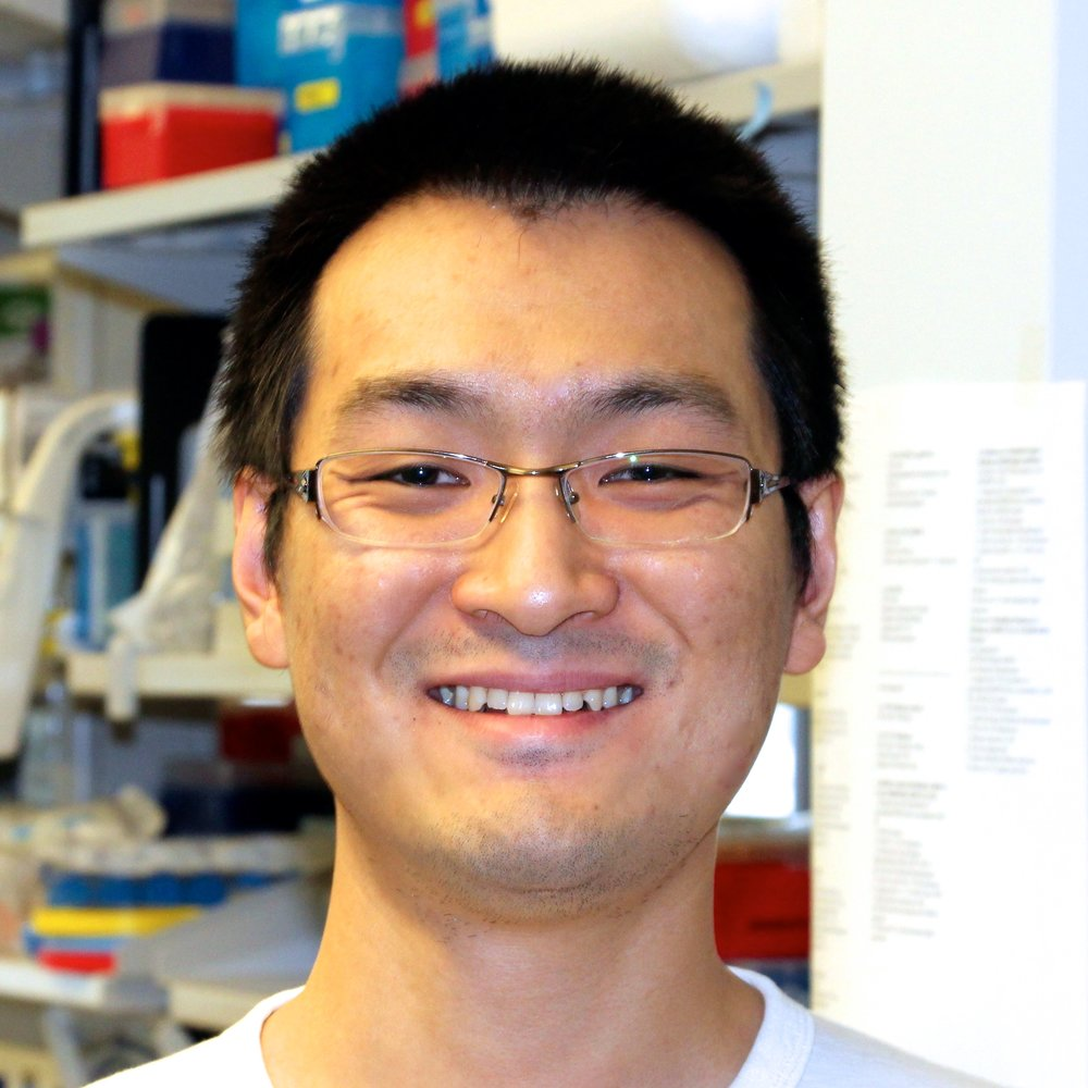 Geng Wang  Research Technician   Education  :   Nanjing Agricultural University (BS),   IIT (MS)   Hometown  :  Jinan, China  Currently : PhD candidate (Molecular Genetics & Genomics) at Wash U