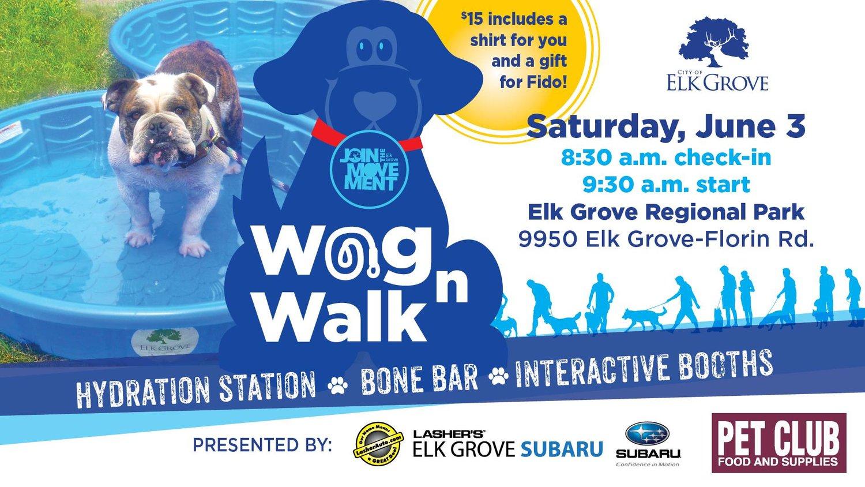 Events pet club wag n walk solutioingenieria Choice Image