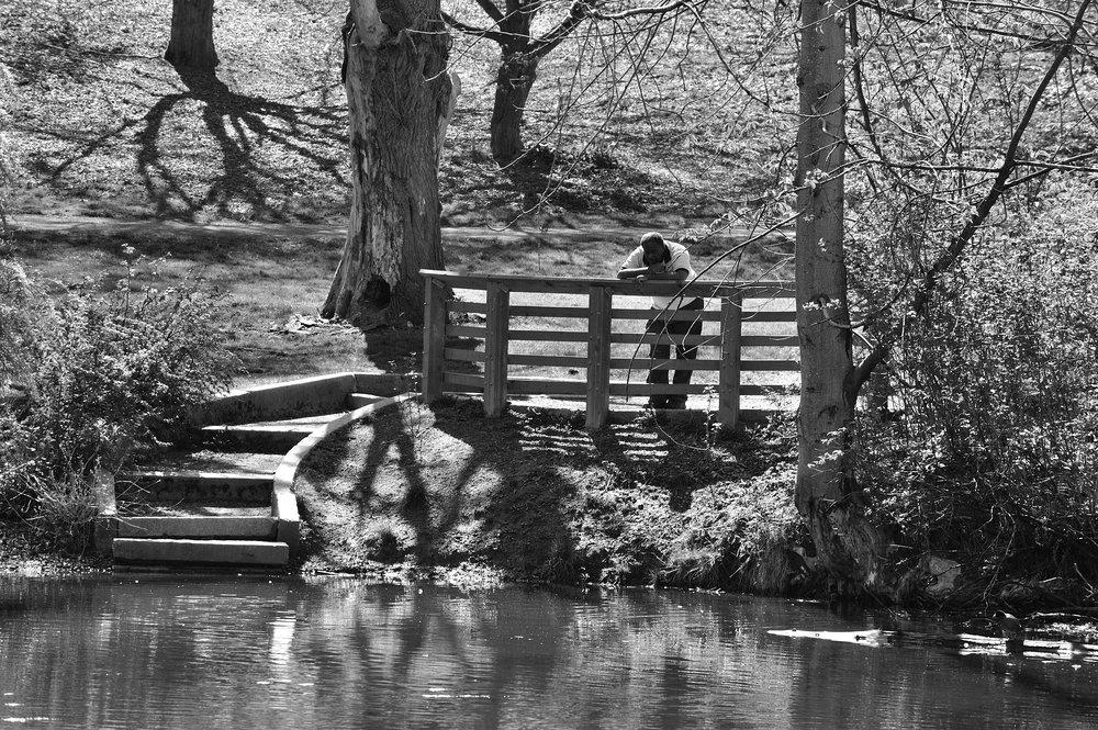 Contemplation,   Arboretum, Seattle,Wa