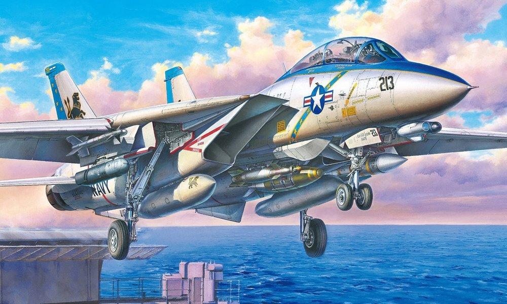 TAMIYA KIT # 61118 1-48 GRUMMAN F-14D TOMCAT.jpg