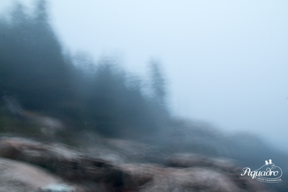 Acadia Rocky Coastline