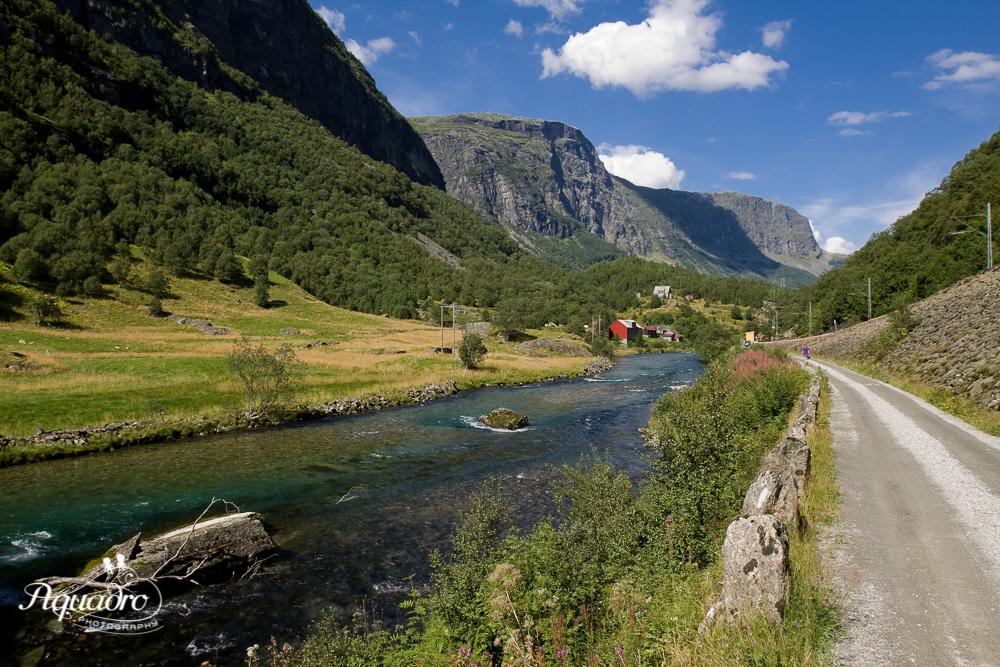 Norweigian Fjord Road
