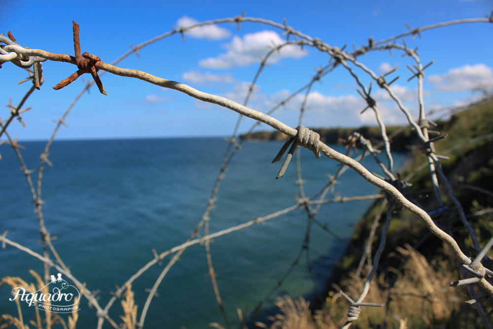 Barbed Wire at Pointe du Hoc
