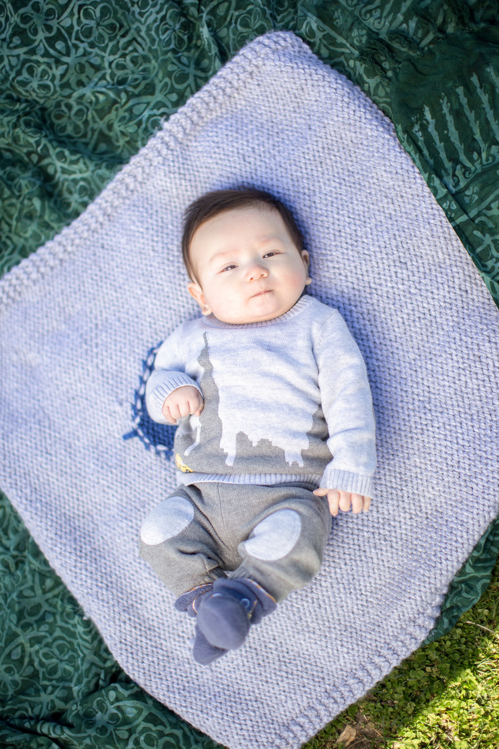 Copy of Baby on a Blanket