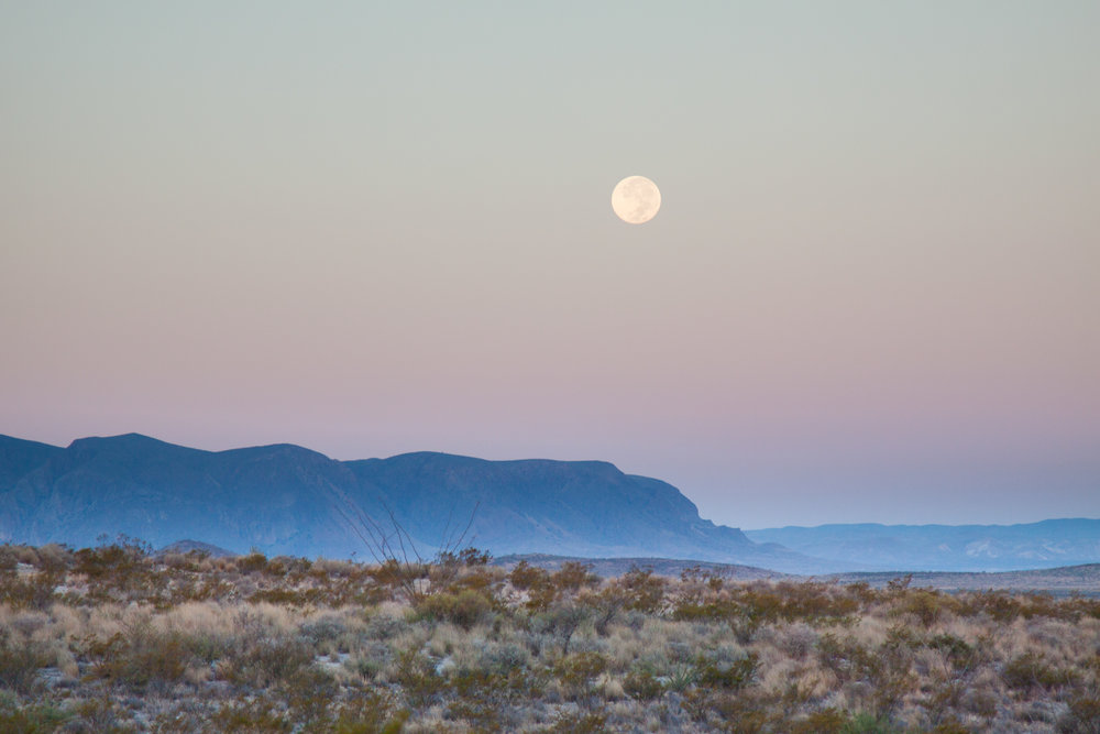 Harvest Moon over Big Bend