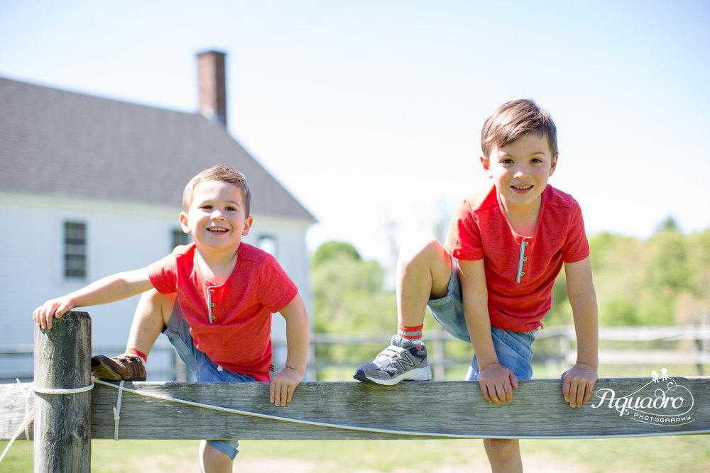 Twin Fence Climbers