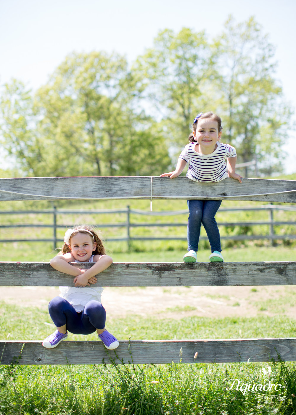 Sister Fence Climbing