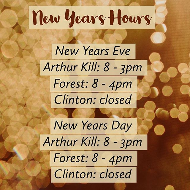 Project Brunch NYE and New Years Day hours