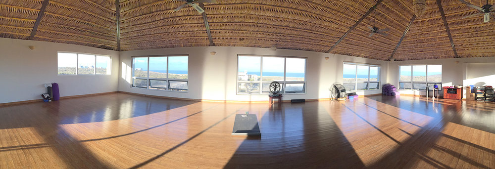 pdm yoga with ocean views.jpg