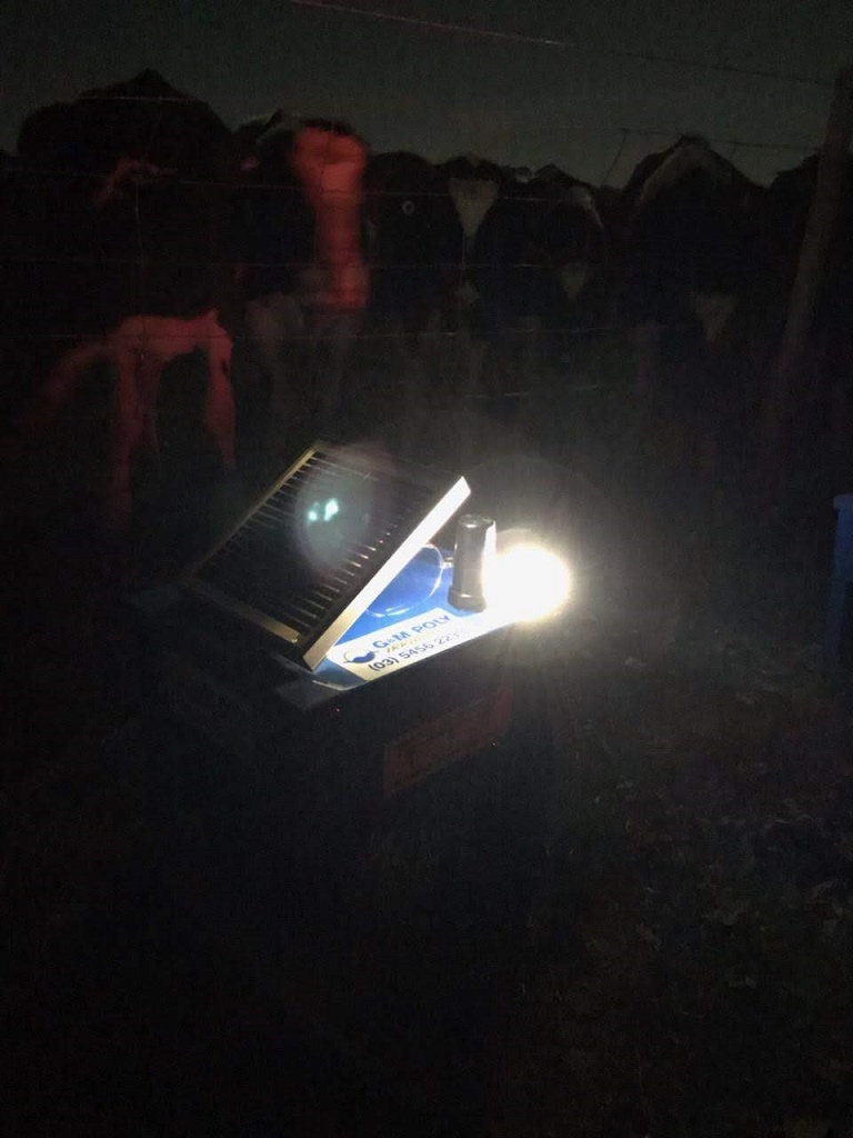 water-monitors-gm-poly-solar-night-light.jpg