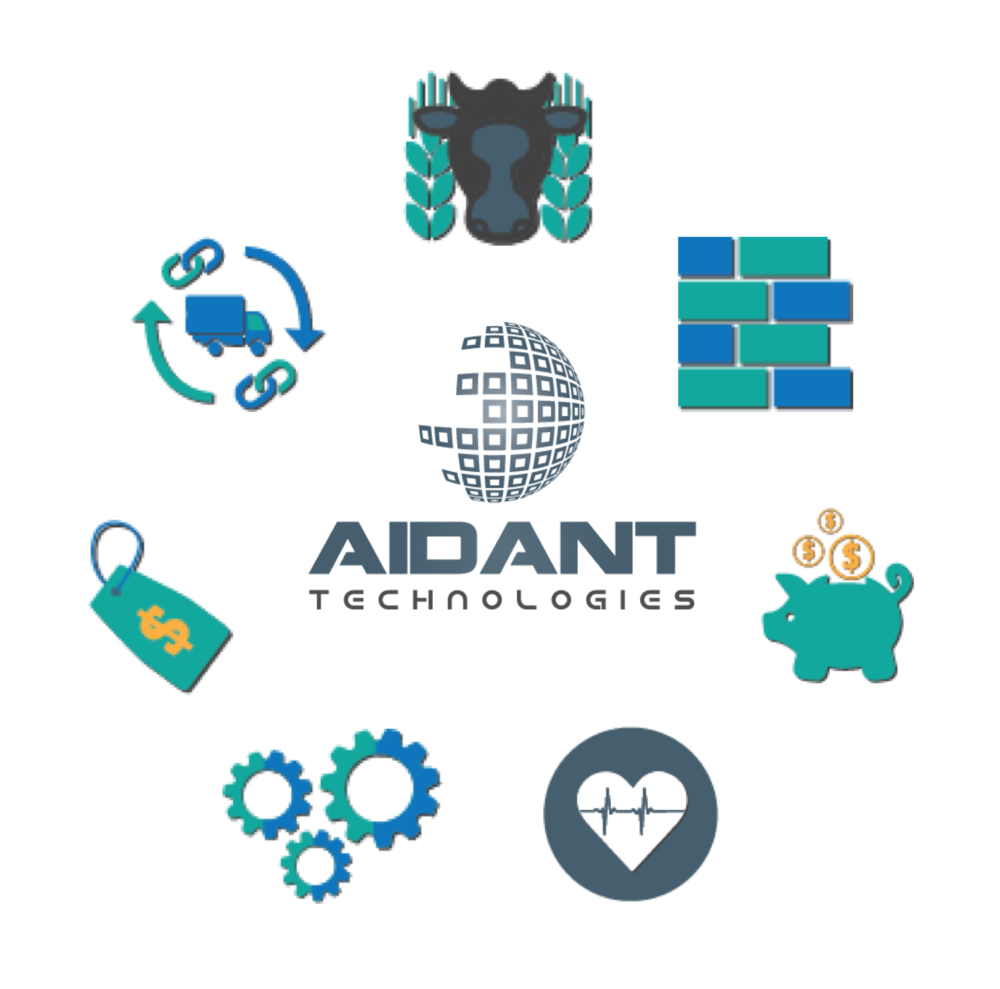 Aidant Technologies Industry Specialization.