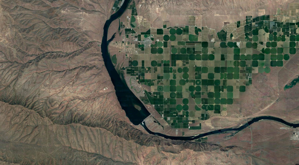 Irrigation near Kathryn's hometown of Yakima, Washington State.  Image ©2017 Google map data