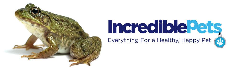 IP_frog.jpg