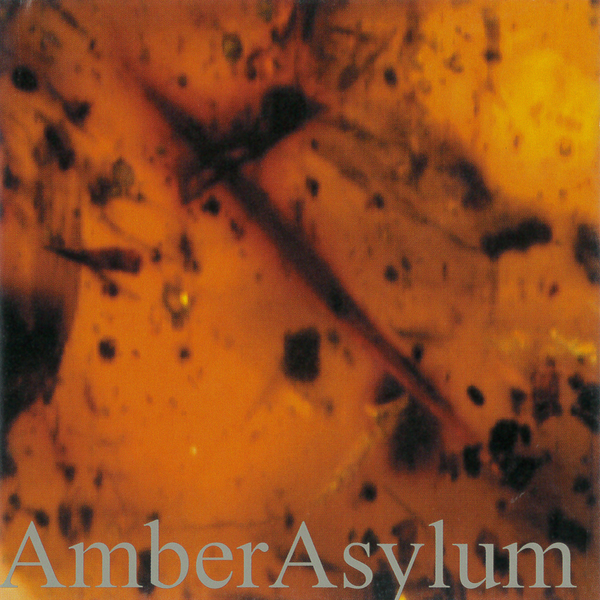 AMBER ASYLUMFROZEN IN AMBER - 2003, NR016