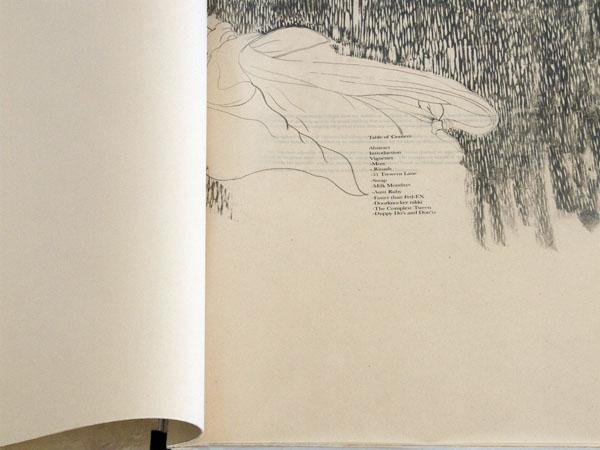 """Vignettes 25""""x 20 ½"""" Graphite, silkscreen on kitakata paper"""