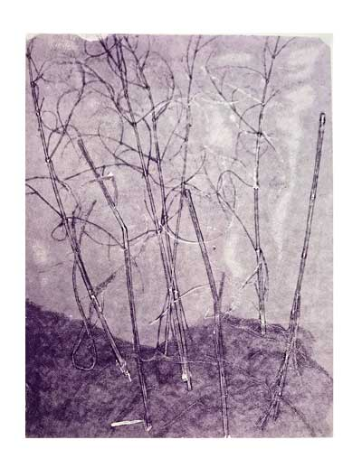 linda brun monoprint 2017-4.jpg