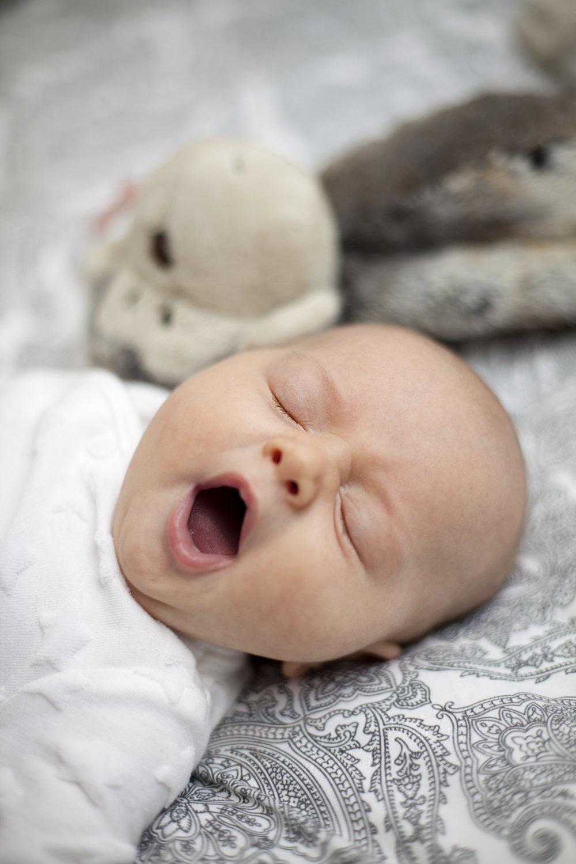 It's a hard life being a newborn..