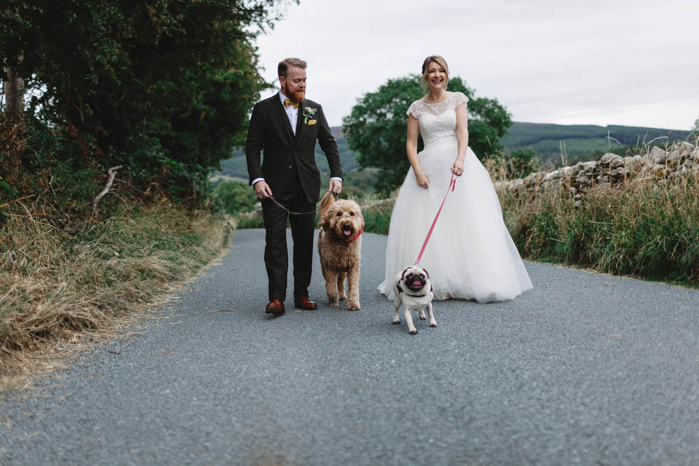 Two dogs at weddings