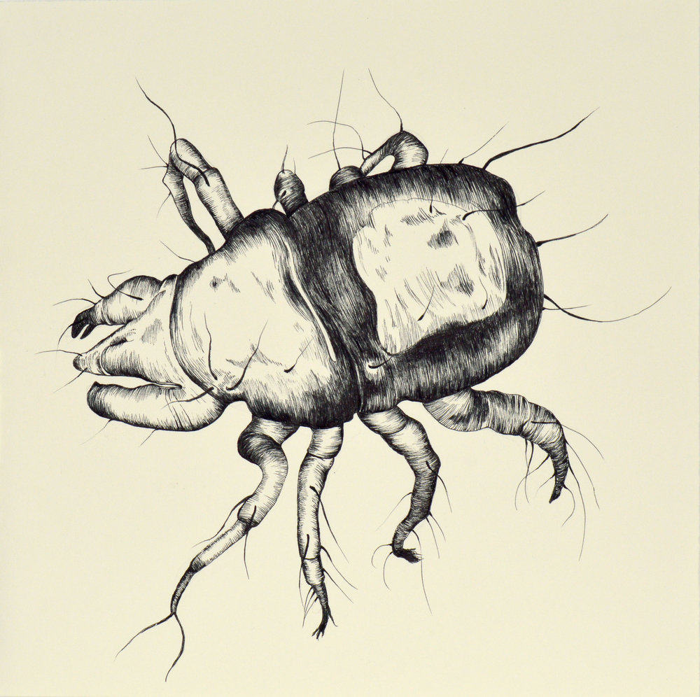 "Dust Mite 12x12"" Ink on Paper 2016"