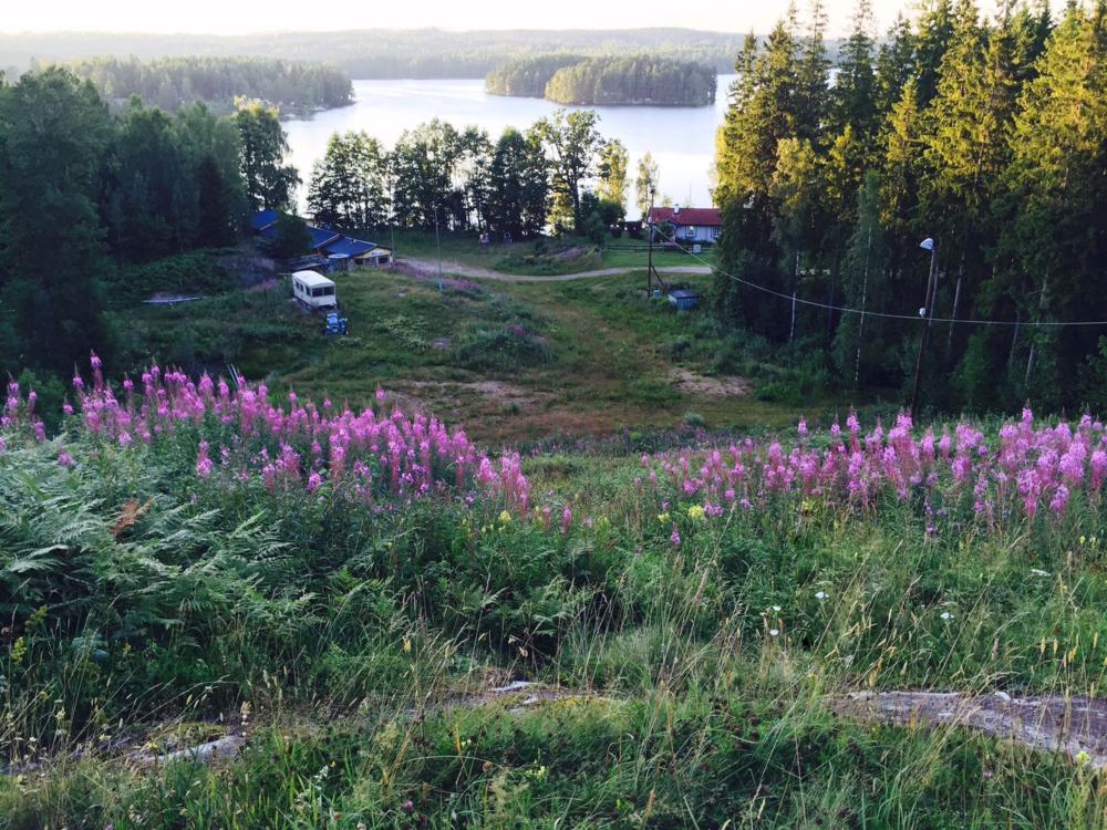 Impressionen von Schweden   Betrachten Sie hier eine Auswahl von Bildern aus unserem Standort in Schweden und lassen Sie sich von der atemberaubenden Schönheit der Landschaft verzaubern.