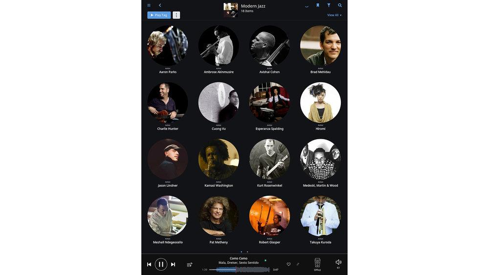Roon software screen shot (artists)