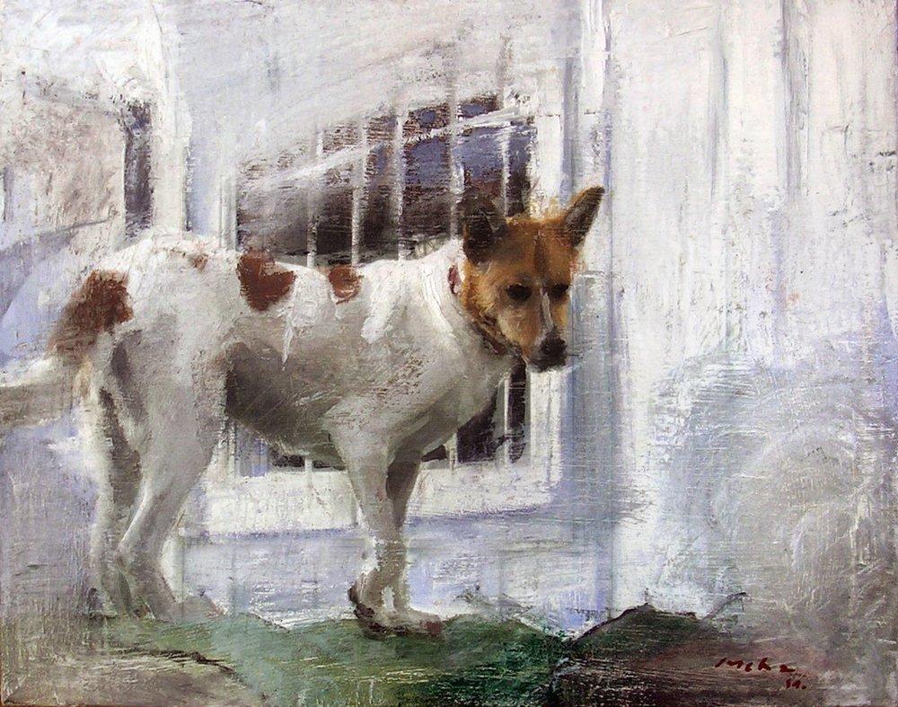 En la perrera