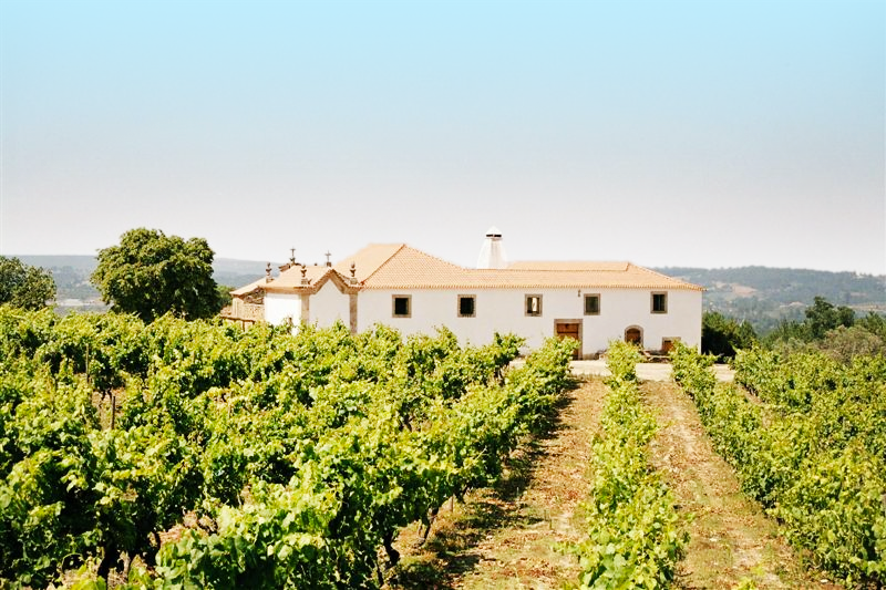 Portal wines - Alvaro de Castro