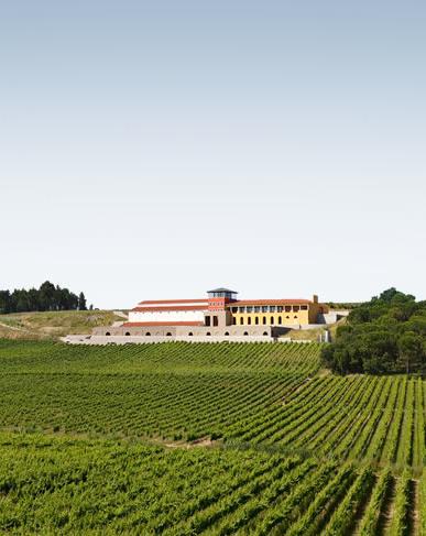 Portal wines - Campolargo