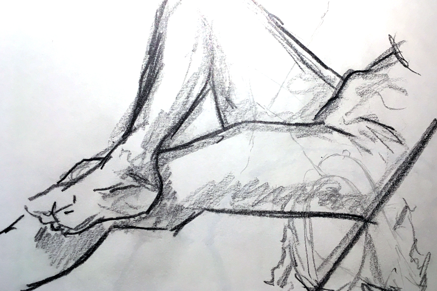 LifeDrawing.jpg