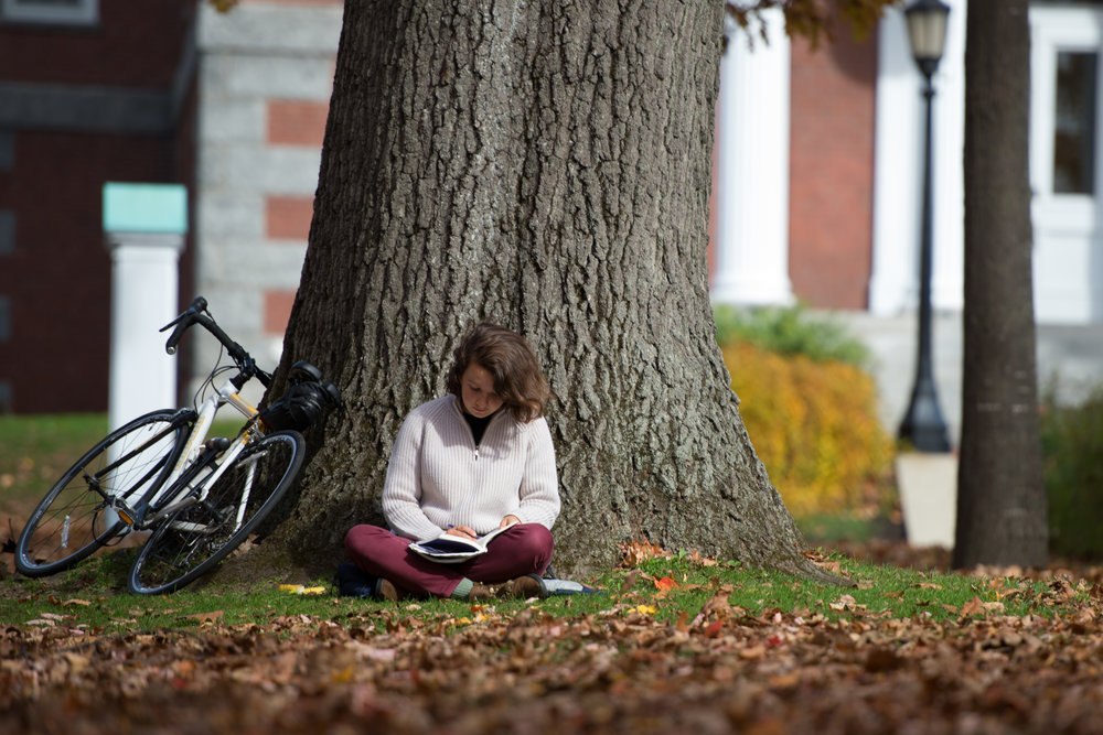 Emma Timbers studies on the historic quad at Bates College on October 23, 2012.