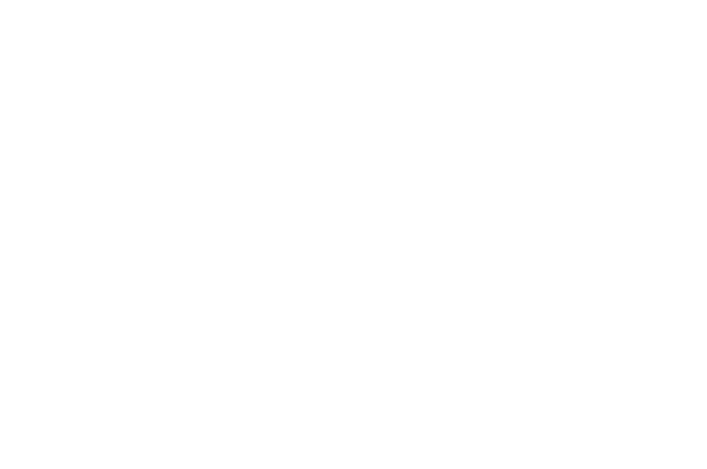 OFFICIAL SELECTION - International Online Web Fest - 2017 (1).png