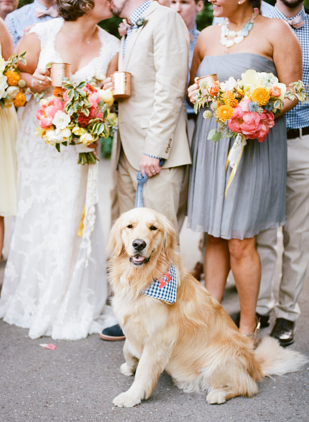 25-dog-at-wedding-preppy.jpg
