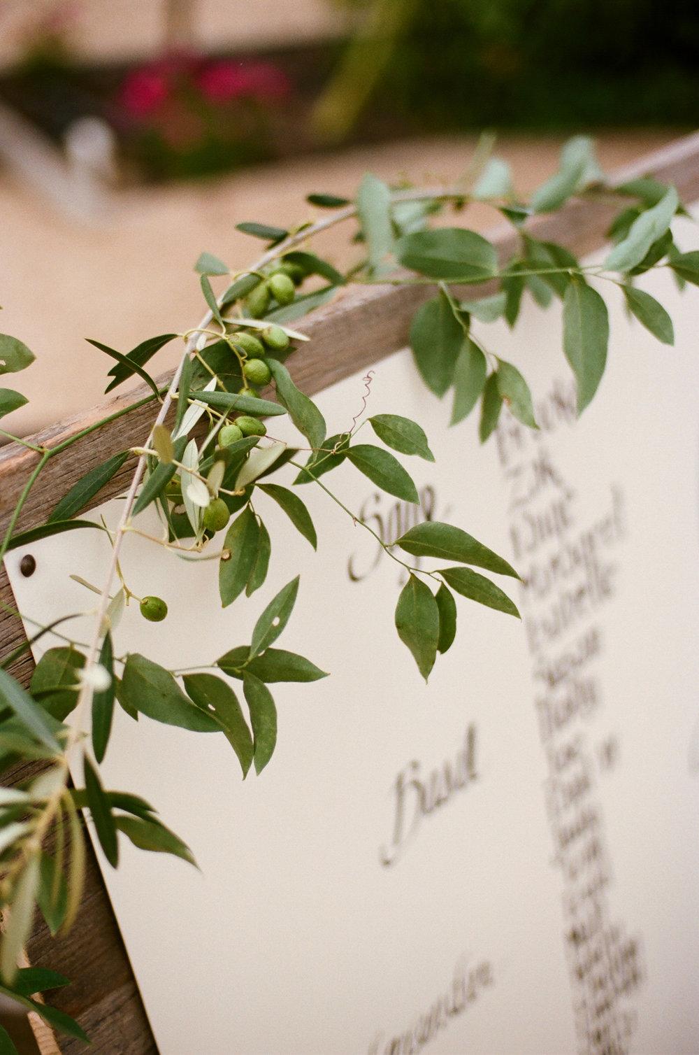 38-herbs-vines.jpg