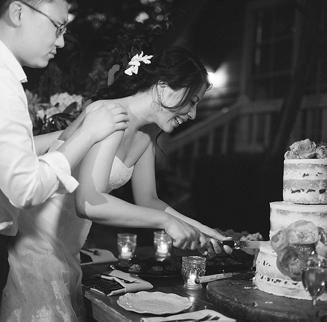 60-cake-cutting-hasselblad-500cm.jpg