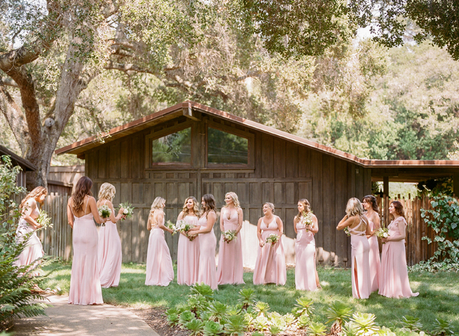 3-elegant-blush-bridesmaids.jpg