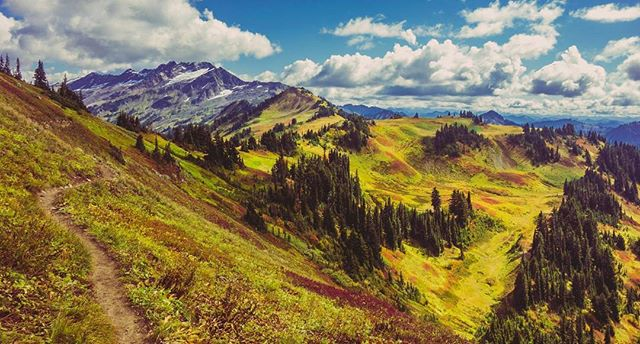 """A wilderness, in contrast with those areas where man and his own works dominate the landscape, is hereby recognized as an area where the earth and its community of life are untrammeled by man, where man himself is a visitor who does not remain."" . On this day in 1964, then president Lyndon B. Johnson sign the Wilderness Act. Since then, congress has designated almost 110 million acres as official wilderness. . Thank you to all the people who work to keep our public lands wild."