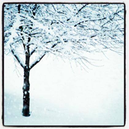 snowstormmain